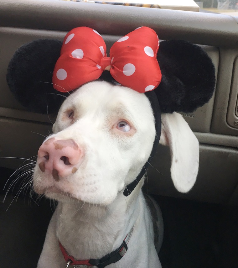 Ruby is cute in her Minnie Mouse hat.