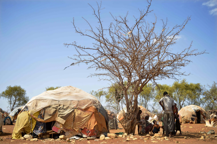 Image: Internally displaced men and children shelter from the sweltering afternoon sun on March 14 at a makeshift camp on the outskirts of Baidoa, where thousands of people arrive daily after they fled the parched countryside.