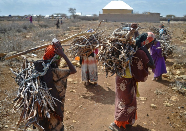 Image: Women carry firewood on March 15 as they walk back to a makeshift camp on the outskirts of Baidoa.