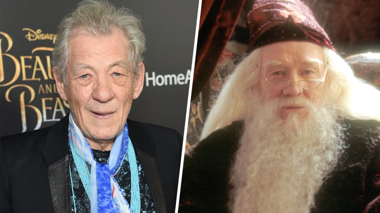 Ian McKellen / Richard Harris as Dumbledore