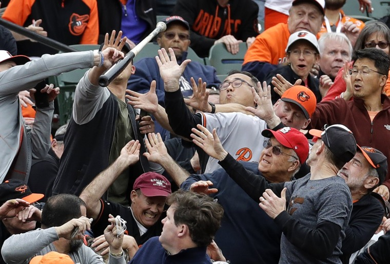 Image: Fans react as a bat flies into the stands