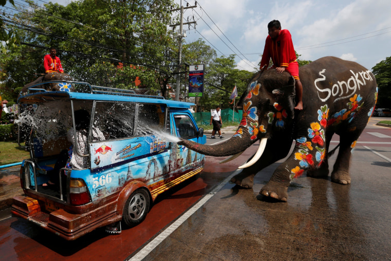 Image: An elephant sprays tourists with water
