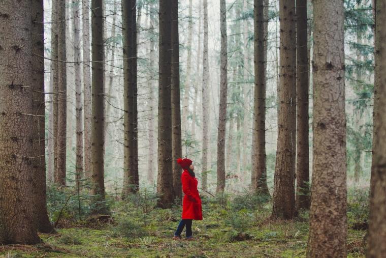Image: Woman Walking Along Wooded Road