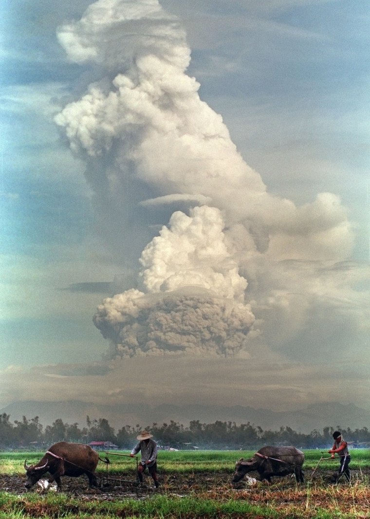 Farmers plow their fields on July 8, 1991 as Mount Pinatubo erupts in the background.