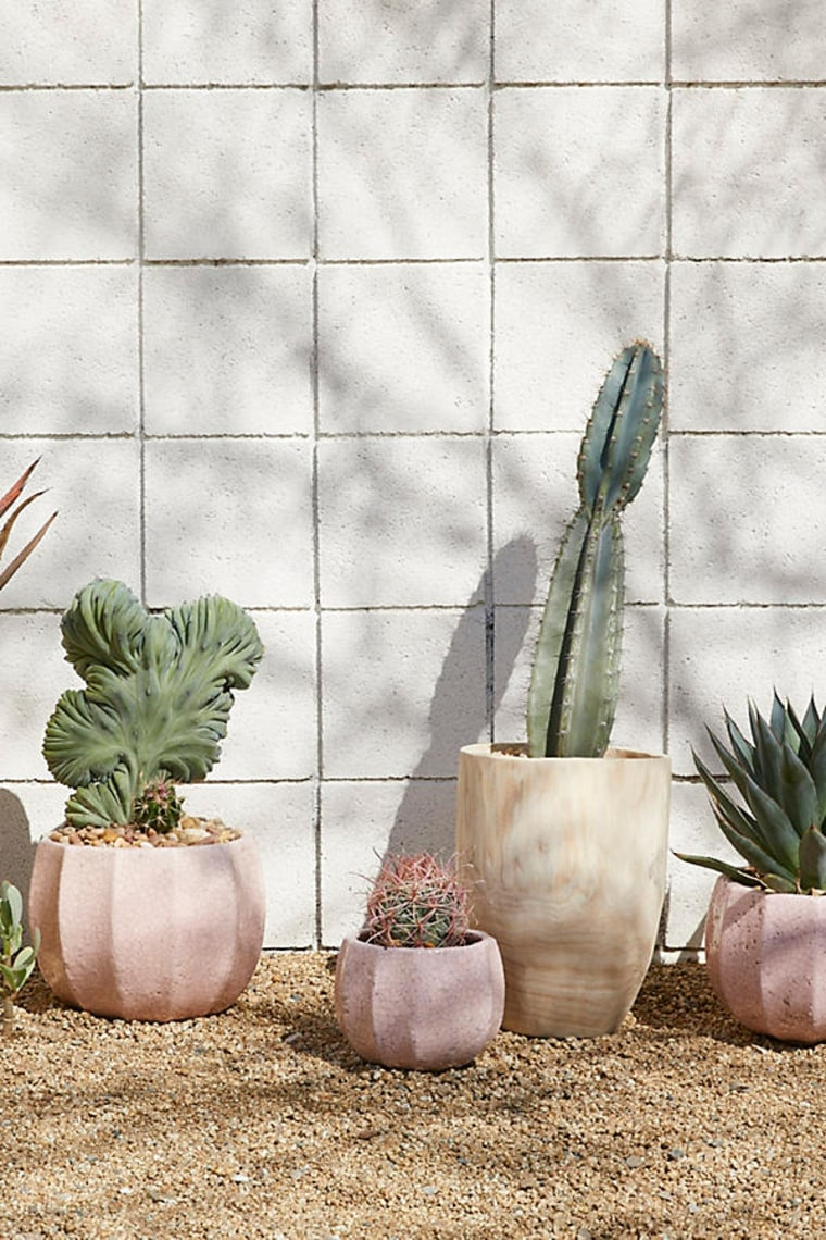 Where to buy planters and flower pots for outdoor and indoor plants