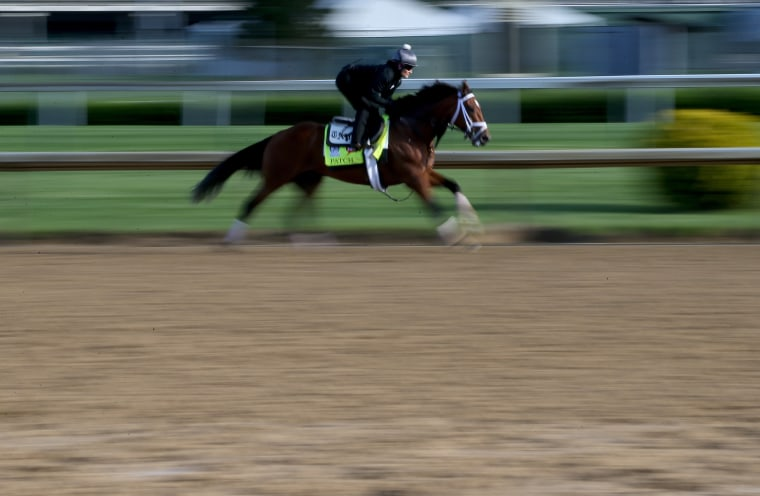 Image: 143rd Kentucky Derby - Previews