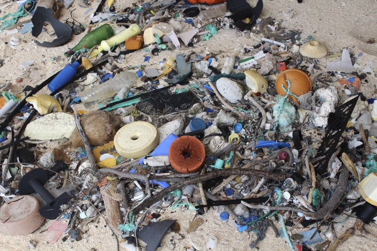 Image: Plastic debris is strewn on the beach on Henderson Island
