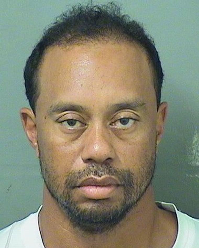 Image: Tiger Woods