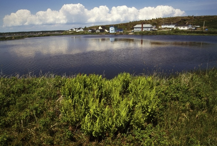 Houses near a pond in Ile Madame, Cape Breton