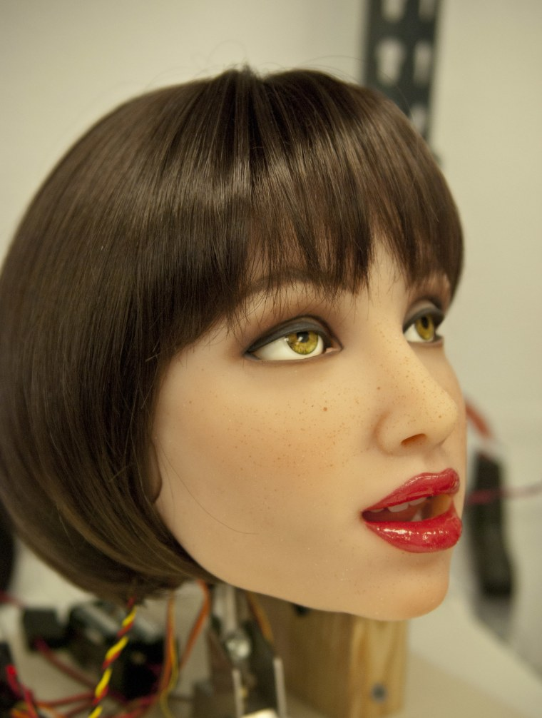 Face of a RealDoll