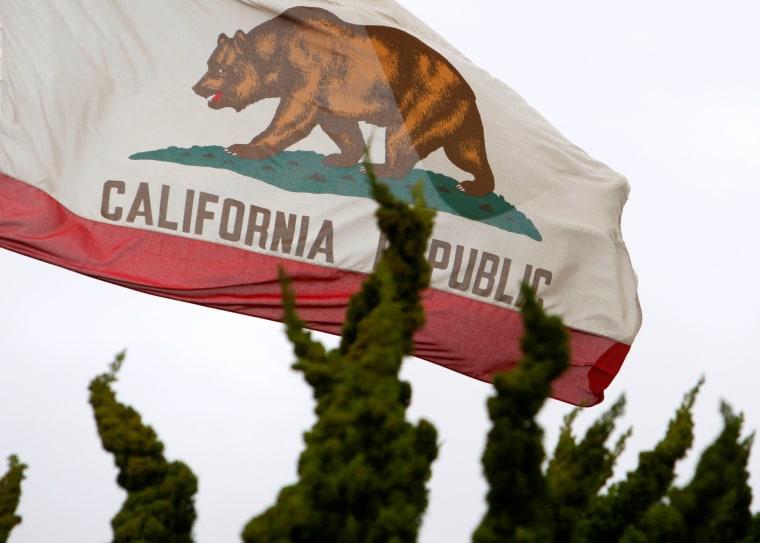 Image: FILE PHOTO - California flag flies above City Hall in Santa Monica