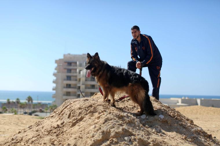 Dog show in Gaza City