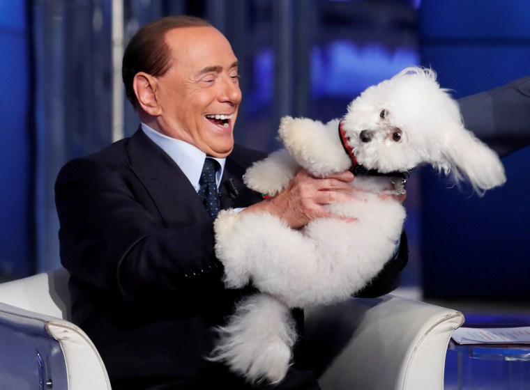 """Image: Italy's former PM Berlusconi plays with a dog during the television talk show \""""Porta a Porta\"""" in Rome"""