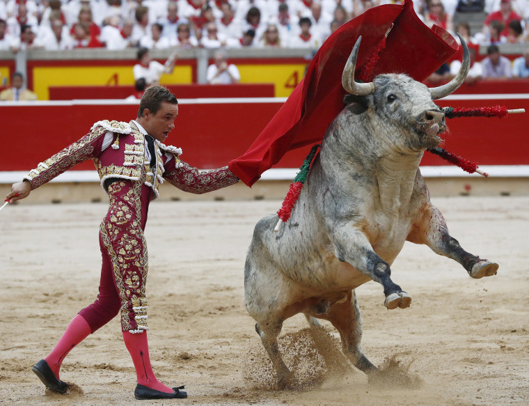 Image: Bullfighter fights with his bull