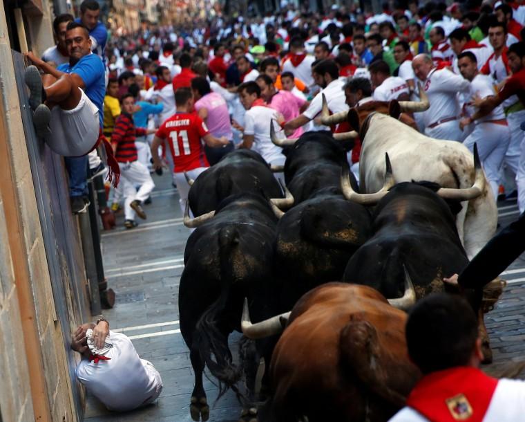 Image: Runners sprint ahead of bulls