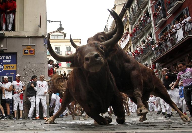 Image: Bulls chase runners