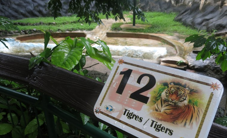 """In this July 7, 2017 photo, a tiger named """"Angel,"""" who recently died at the Dr. Juan A. Rivero Zoo, still has his sign outside his enclosure in Mayaguez, Puerto Rico."""