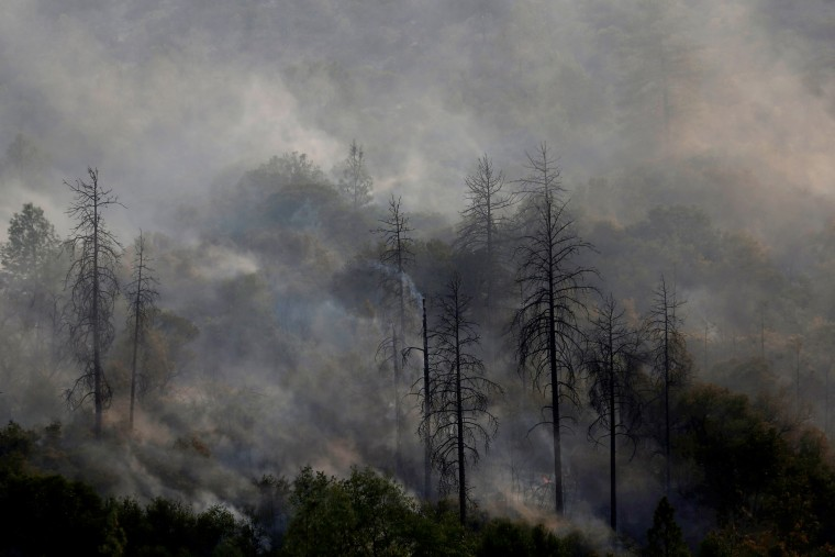 Image: Smoke rises from a charred hill on July 19.