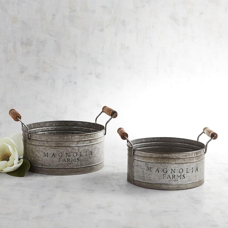Magnolia pots