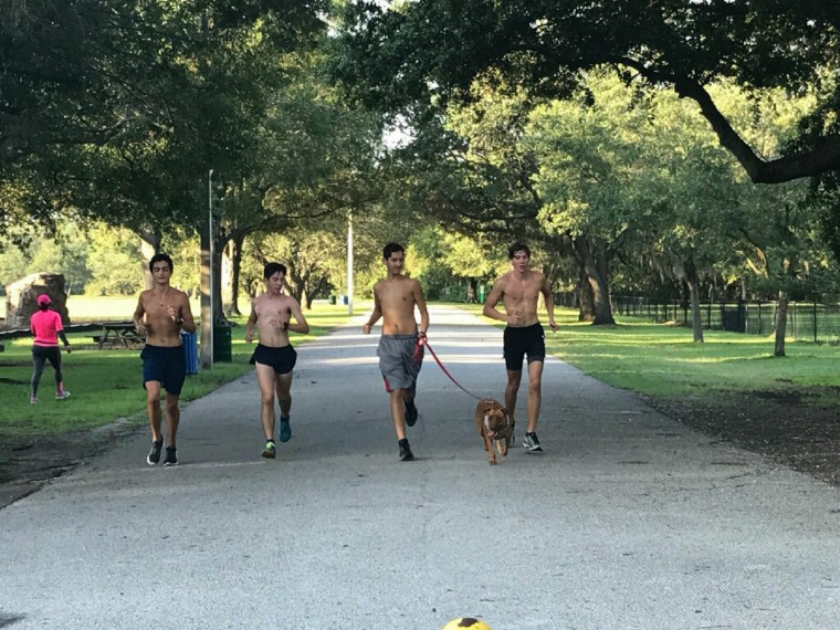 Florida track team takes shelter dogs on runs
