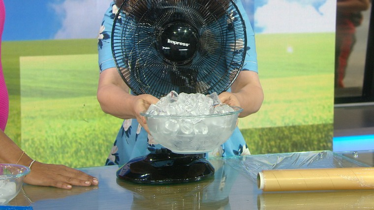 fan + bowl of ice and water