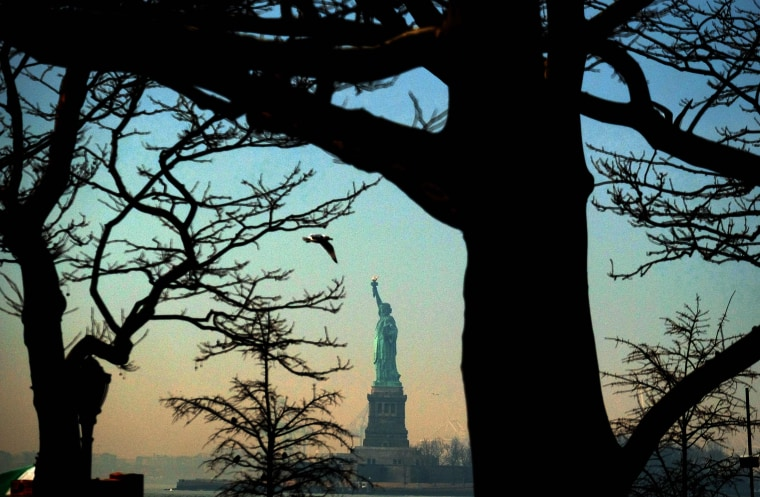 Image: The Statue of Liberty is seen from  Battery Park in New York on Feb. 8, 2017.