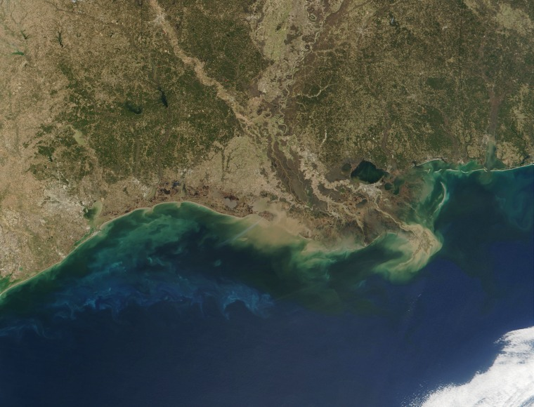 Satellite view of the Gulf of Mexico