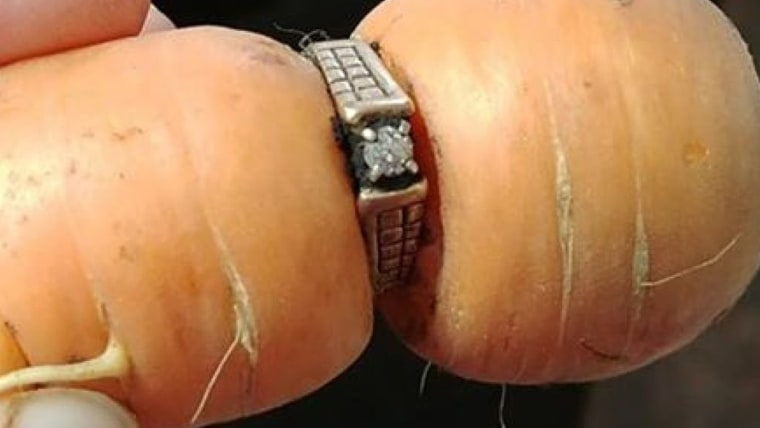 An 84-year-old Canadian widow got her missing engagement ring back after her daughter-in-law found it in a garden, wrapped around a carrot.
