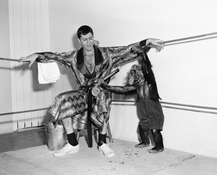 Image: Jerry Lewis wrestles a chimp