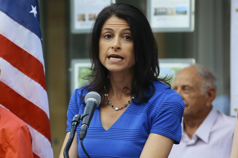 Image: Dana Nessel announces her decision to run for Michigan Attorney General