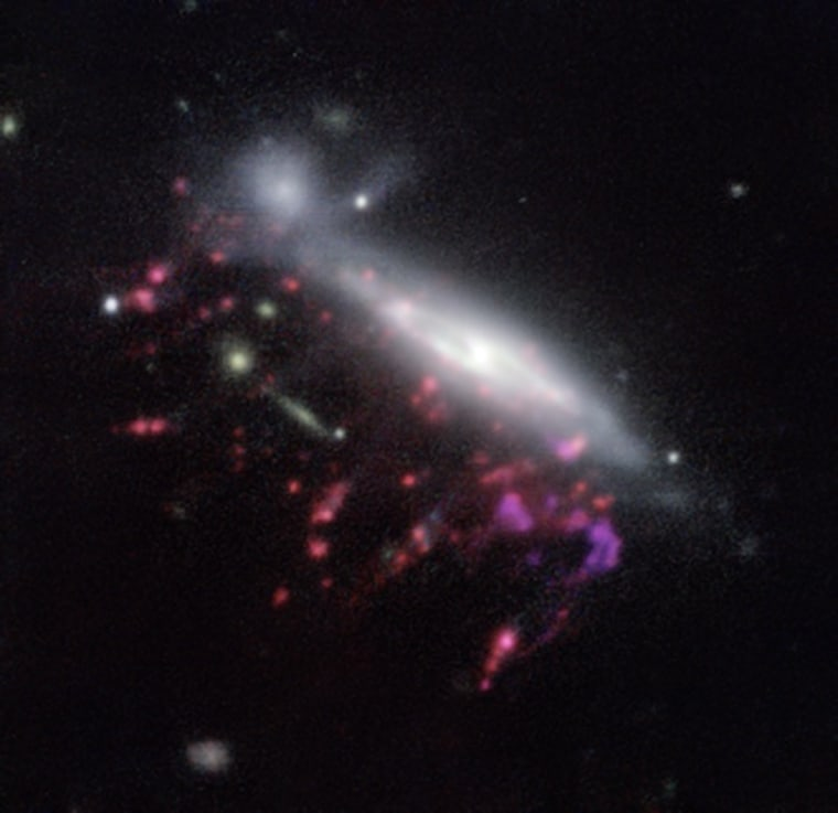 "Observations of ""jellyfish galaxies"" with ESO's Very Large Telescope have revealed a previously unknown way to fuel supermassive black holes. This  picture of one of the galaxies, nicknamed JO204, shows clearly how material is streaming out of the galaxy in long tendrils to the lower-left."