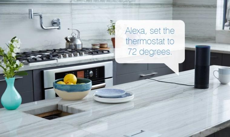 Amazon Alexa in Use