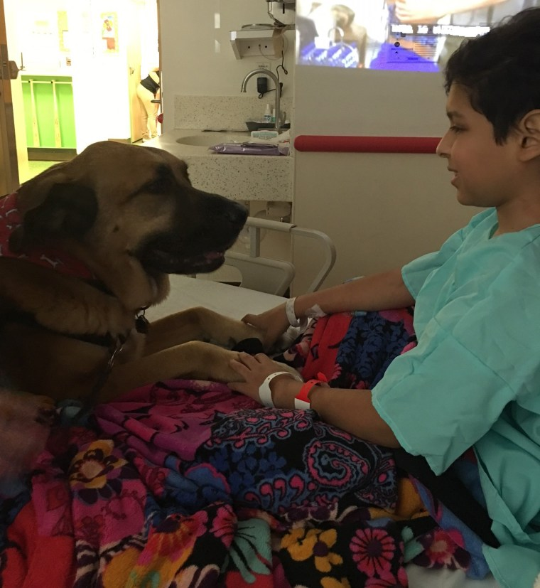 Tony Castro with a therapy dog following his surgery.