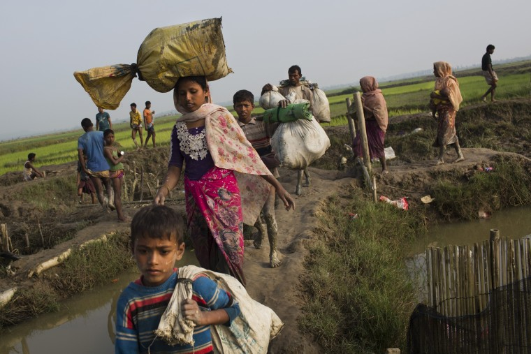 Image: Members of Myanmar's Rohingya ethnic minority walk through rice fields after crossing the border into Bangladesh