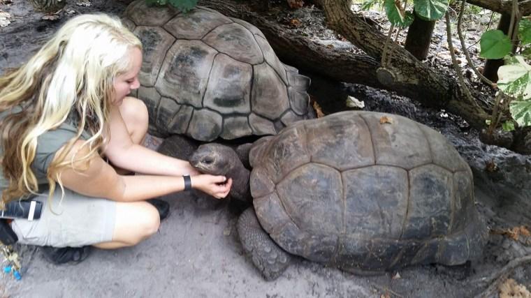 Image: Palm Beach Zoo