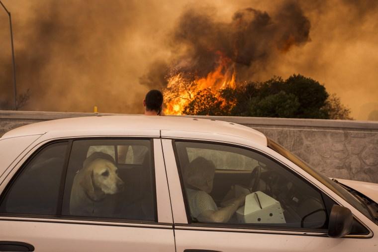 Image: La Tuna Canyon Fire Prompts Evacuations in Burbank