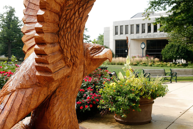 Image: A wood carving sculpture of American University's mascot, an eagle, is displayed on its campus in Washington