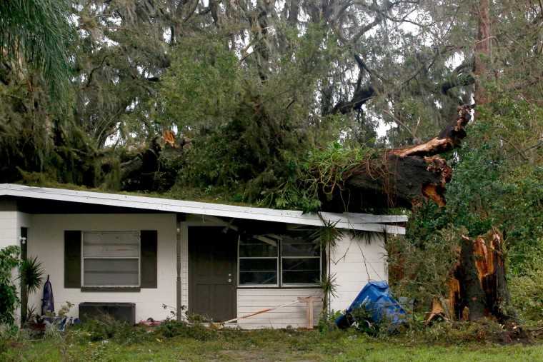 Image: A large tree lays on top of a home in Fort Meade on Sept. 11.