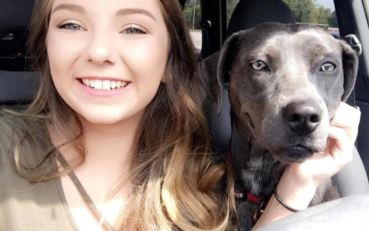 College student brings dog to before Hurricane Irma evacuation