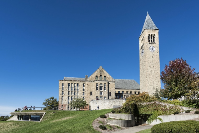Image: Library and McGraw bell tower on the Cornell University campus