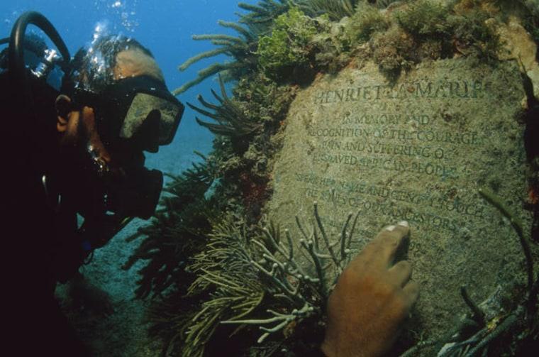 Michael Cottman scuba diving
