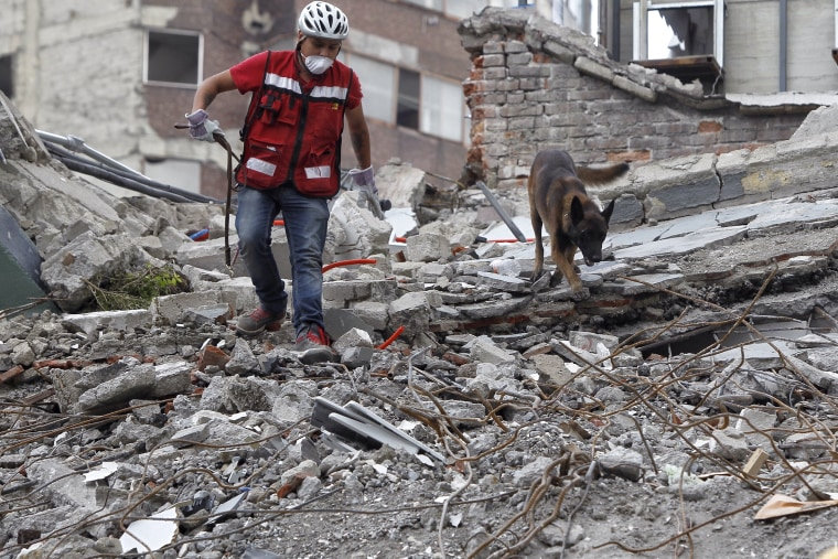 Image: Rescue crews continue to search for victims after earthquake in Mexico