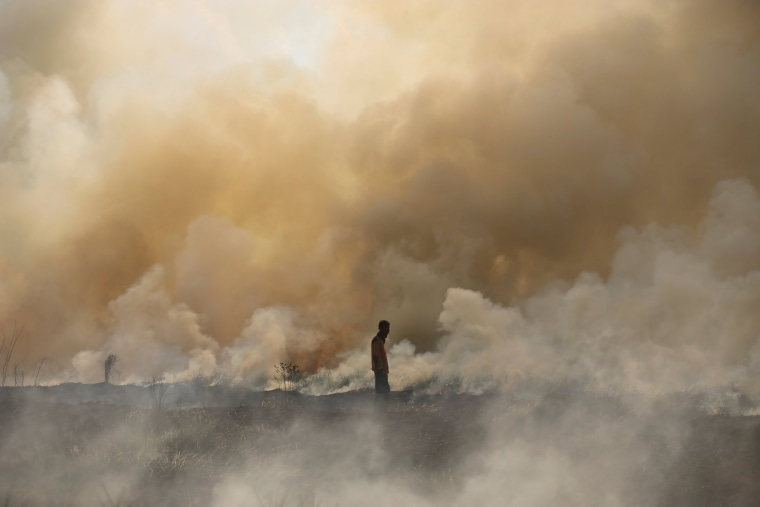 Image: Disaster management officer walks towards a brush fire near Palembang
