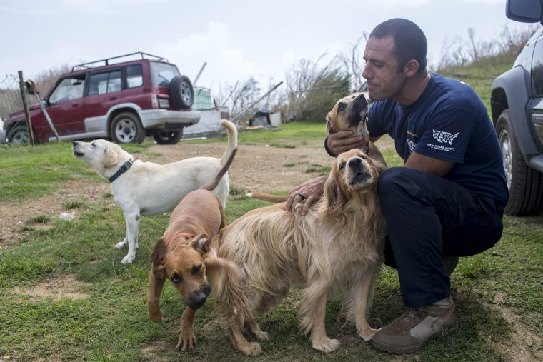 Hurricane Maria Response to help animals