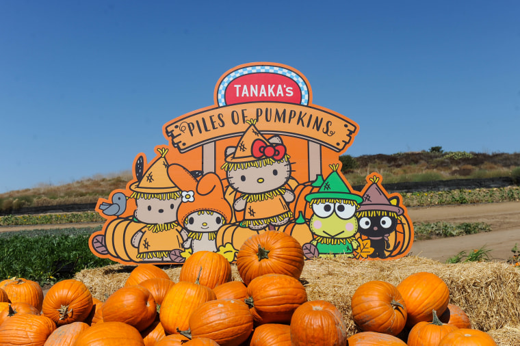Sanrio heads to Tanaka Farms (2017)