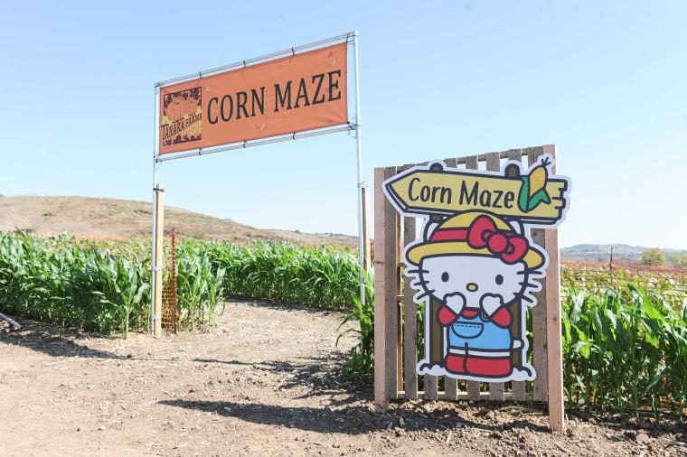 Hello Kitty, Tanaka Farms