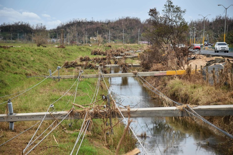 Image: Destroyed electrical posts by Hurricane Maria is seen in Vega Alta, Puerto Rico