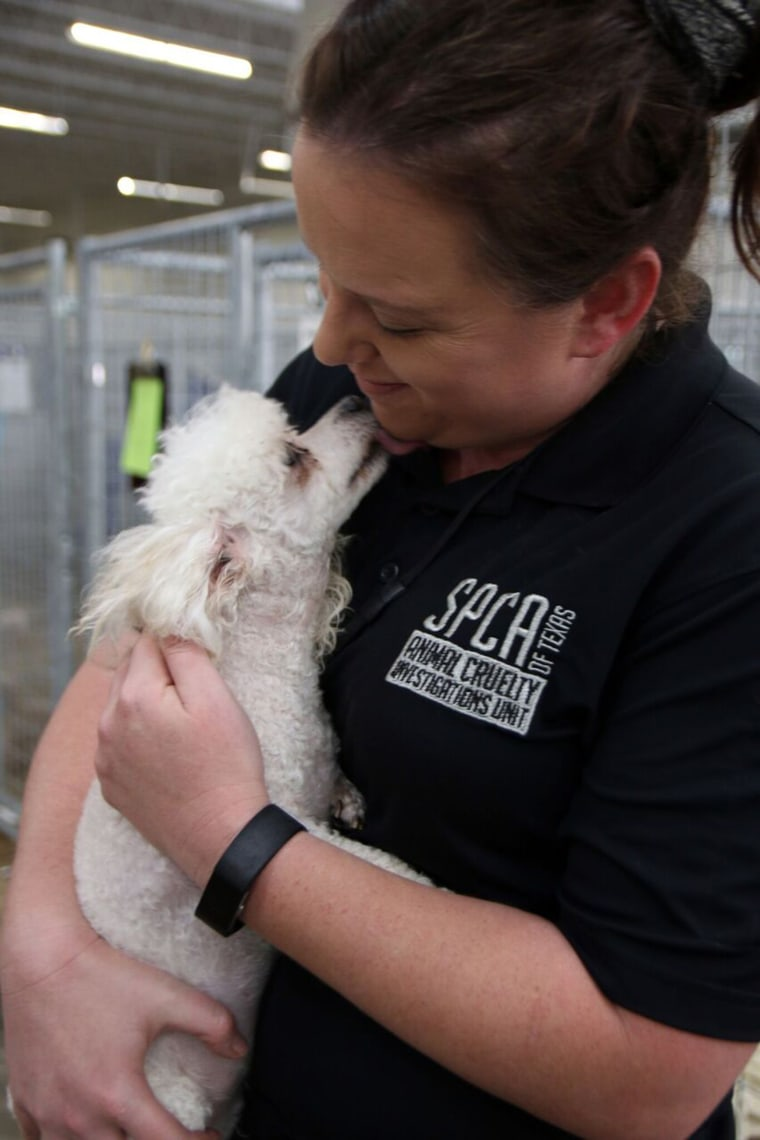 SPCA of Texas helped expose a puppy mill in Texas