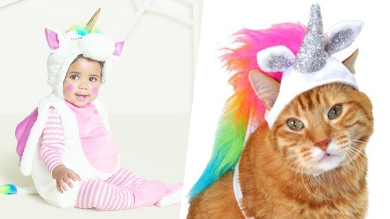 matching kids and pet costumes