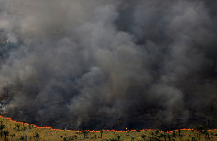Image: A forest burns during an operation to combat illegal logging in Apui, Brazil